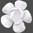 Flowers No.18 – Flower 5
