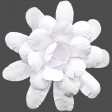 Flowers No.18 – Flower 6