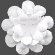 Flowers No.18 – Flower 8