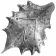 Leaves No.6 Template 4