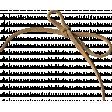 Strings No.5 – String 07