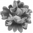 Flowers No.20 - Template 6