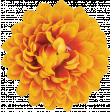 Flowers No.20 - 2