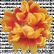Flowers No.20 - 6