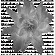 Flowers No.21 Flower 6 - Template