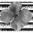 Flowers No.22 Flower 1 - Template