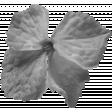 Flowers No.22 Flower 5 - Template