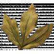 Leaves No.8 Leaves 4