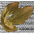 Leaves No.8 Leaves 6