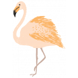 unwind flamingo 2