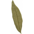 Leaves No.10 – Leaf 10