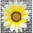 Flowers No.26 – Flower 02
