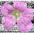 Flowers No.29-01