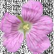 Flowers No.29-06