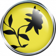 Our House Garden,Elements - Yellow Brad