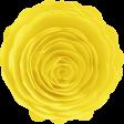 Dream Big Elements Kit - Sahin Designs - Rolled Paper Flower