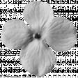 Flowers No. 03 Templates - Flower Template 04