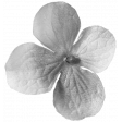 Flowers No. 03 Templates - Flower Template 06