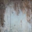 Textures No.5: Wood Texture 05