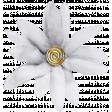 Sugar & Sweet Elements - Lilac Flower