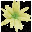 Flowers no 4 - Flower 04