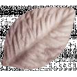 Autumn Day - Leaf 02