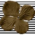 KMRD-Fish Tails-flower04