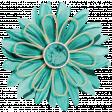 KMRD-Navajo Blanket-flower1