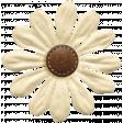 KMRD-Navajo Blanket-flower3