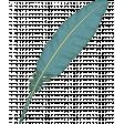 KMRD-Patriotic-quill