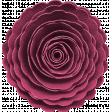 KMRD-202105DC-Cherry Blossoms-flower3