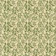 KMRD-Cracks,Bams & Dots-greendragons