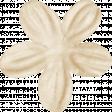 KMRD-Cracks,Bams & Dots-flower6