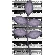 brishti_leaves 2