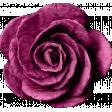 brishti_rose 3