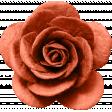 brishti_rose 4