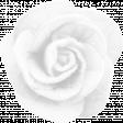brishti_rose 6