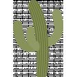 southwestern_cactus 2