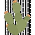 southwestern_cactus 5