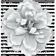 ErodedHues_flower 3