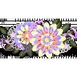 ps_paulinethompson_SLSB_cluster 2