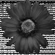 Silk Flower Template 012