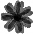 Paint Stamp Template 447