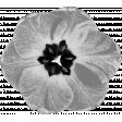 Flower Template 013