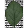 Back To Nature - Leaf