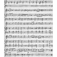 Music Template 005