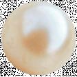 All the Princesses - Cream Button