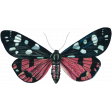 Cozy Day - Butterfly 1