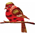 Toolbox Needlework - Bird on Branch