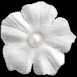 Raindrops & Rainbows - White Flower